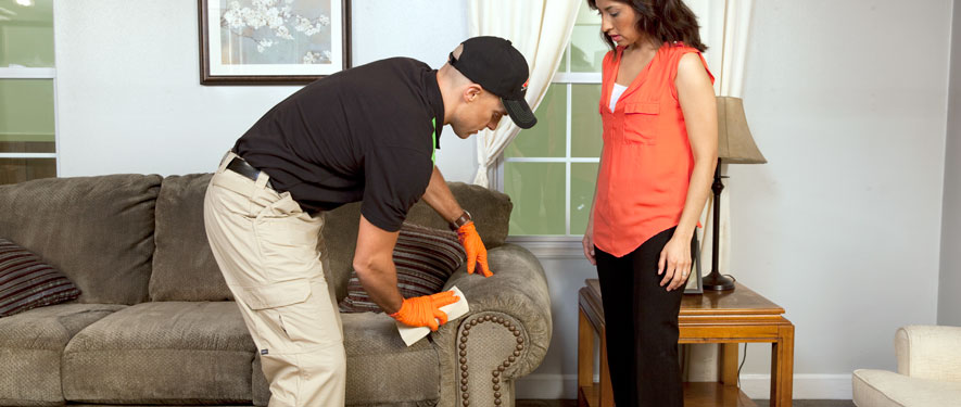 Bay City, MI carpet upholstery cleaning