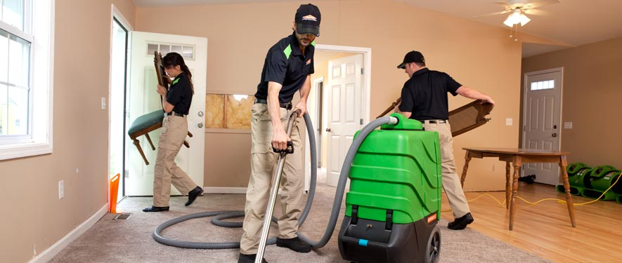 Bay City, MI cleaning services
